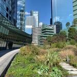 セントラルパークタワー・ラ・トゥール新宿 20階 3LDK 790,000円の写真8-thumbnail