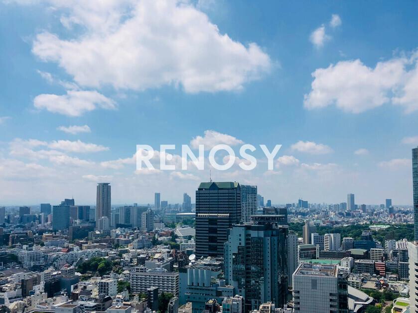 赤坂タワーレジデンス トップオブザヒル 33階 1LDK 450,000円の写真25-slider