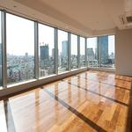 赤坂タワーレジデンス トップオブザヒル 39階 1LDK 495,000円の写真13-thumbnail