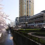 中目黒アトラスタワーの写真2-thumbnail