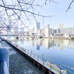 晴海ビュータワーの写真29-thumbnail