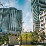 アーバンドックパークシティ豊洲タワー B-3階 2LDK 349,200円〜370,800円の写真4-thumbnail