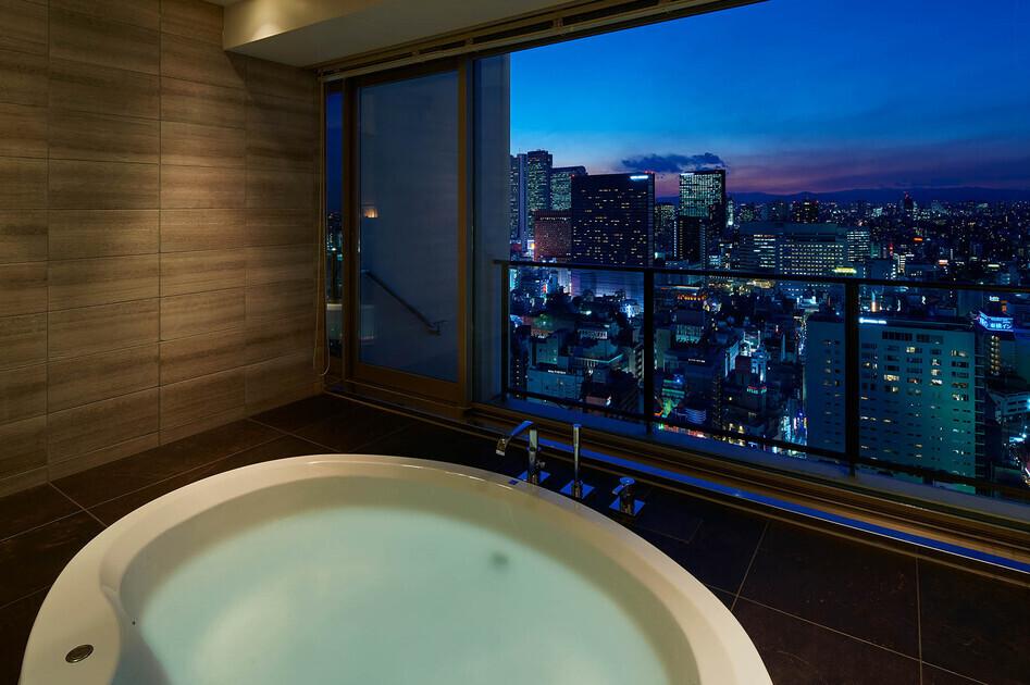 コンフォリア新宿イーストサイドタワー 14階 2LDK 398,670円〜423,330円の写真27-slider