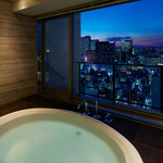 コンフォリア新宿イーストサイドタワー 14階 2LDK 398,670円〜423,330円の写真27-thumbnail