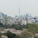 ザ・パークハウス新宿御苑西の写真15-thumbnail