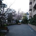 ヒルレジデンス大崎の写真4-thumbnail