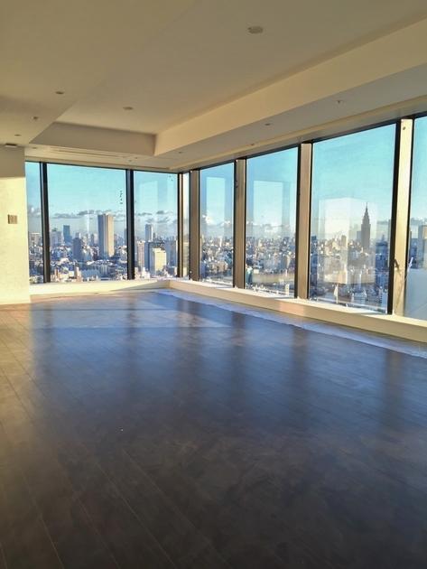 ラ・トゥール新宿ガーデン 37階 1K 270,000円の写真15-slider