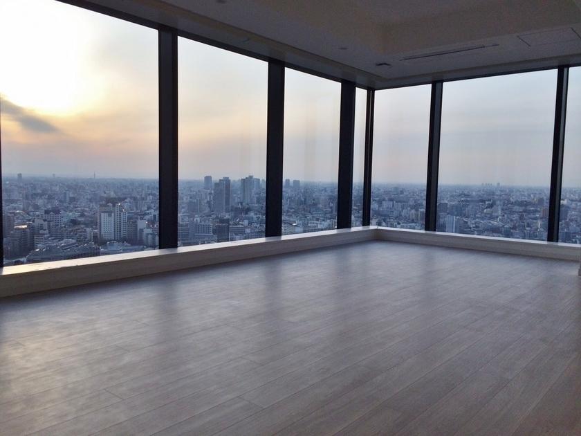 ラ・トゥール新宿ガーデン 37階 1K 270,000円の写真17-slider