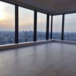 ラ・トゥール新宿ガーデン 37階 1K 270,000円の写真17-thumbnail