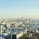 ラ・トゥール新宿ガーデン 37階 1K 270,000円の写真26-thumbnail