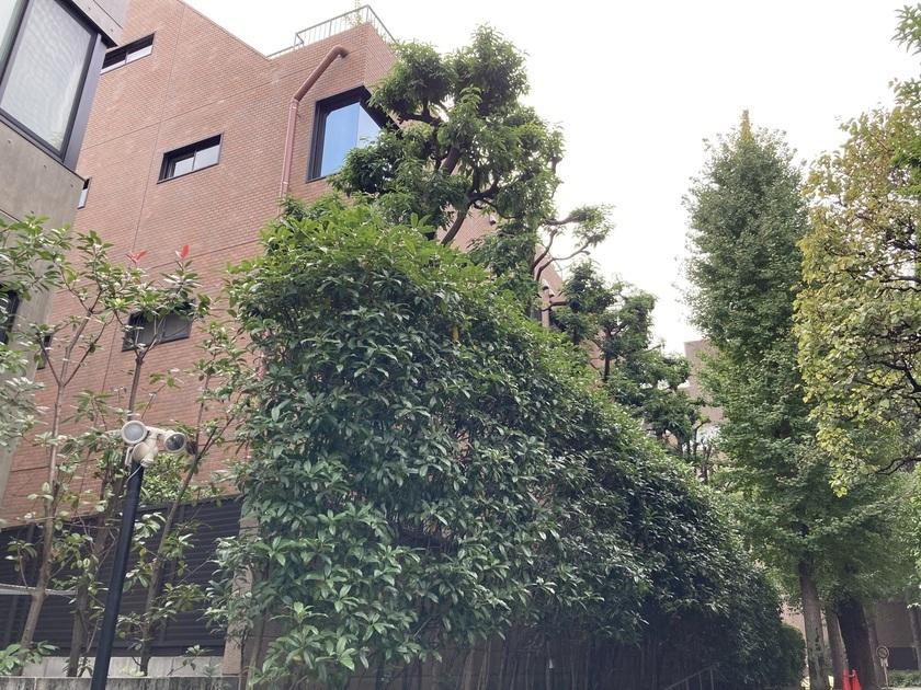 乃木坂パーク・マンションの写真3-slider