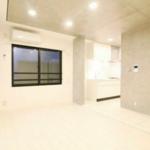 MDM白金台 B1階 1R 118,000円の写真11-thumbnail