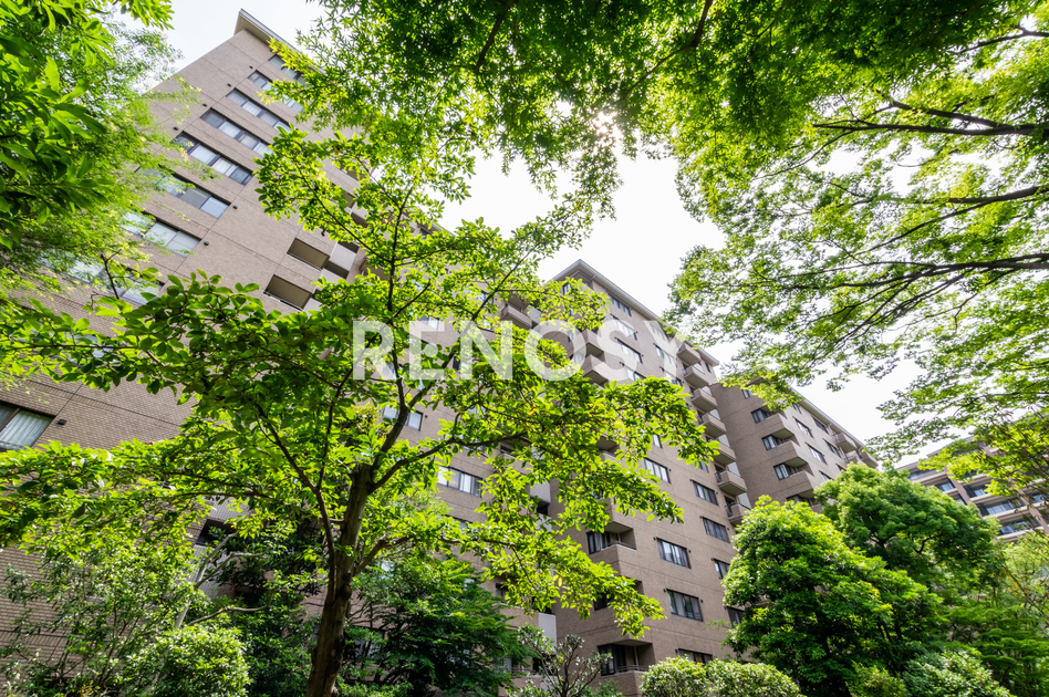広尾ガーデンヒルズ ノースヒルO棟の写真10-slider