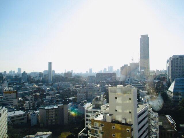 パークコート赤坂ザ・タワー 16階 2LDK 337,560円〜358,440円の写真17-slider