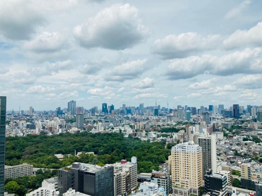 ブリリアタワーズ目黒 サウスレジデンス 37階 2LDK 660,000円の写真5-slider